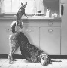 Teamwork A