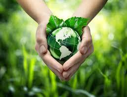 hållbar
